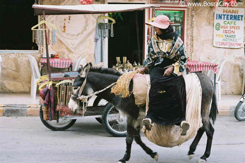 هذه سوريا المباركة Daily-life-072